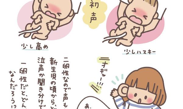 双子の産声