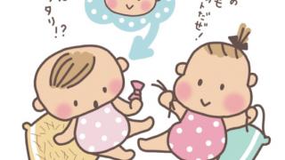 産後の母の抜け毛と赤ちゃんの抜け毛