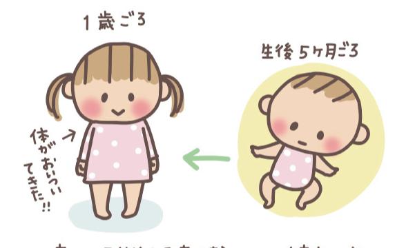 赤ちゃんフォルム